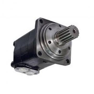 Motore idraulico Tipo di olio motore SMS da 100 a 400 Albero Ø32 simile