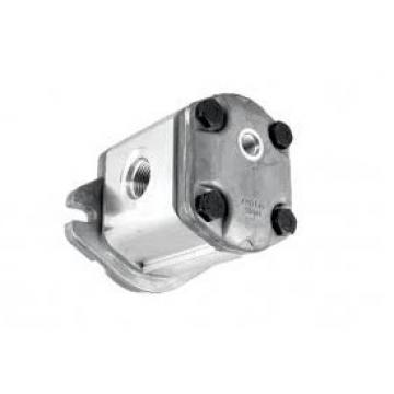 "Flowfit Idraulico Motore 396,5 Cc / Rev 1 "" Parallele con Chiave Albero"
