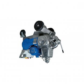Pompa freno radiale a pollice Discacciati leva nera forata e pistone 13mm