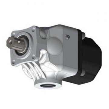 POMPA a pistone idraulico diakin modello V15A1RY-95 montato su HITACHI Seiki