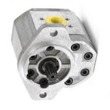 28 GPM 2 STAGE HYDRAULIC PUMP ALL CAST IRON CONSTRUCTION
