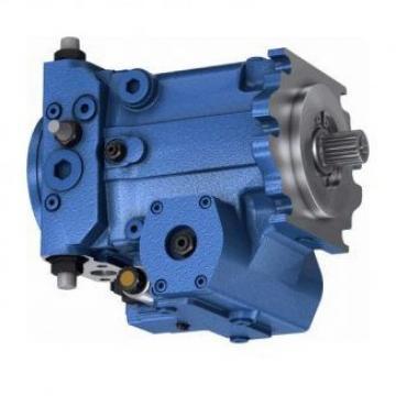 Pompa idraulica A1172300064 della pompa a pistoni radiali Mercedes W124 230E
