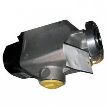 Pompa a pistoni ISO 125 LT KAZEL