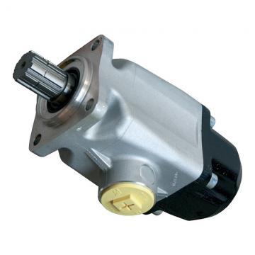 Pompa a pistone in ceramica CAT PUMPS 240 1200PSI 13.6 l/min fino a 85 bar NUOVA