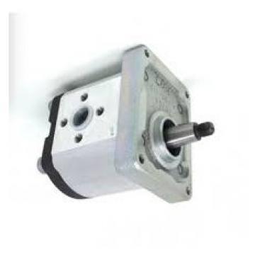 Boschetto Gru Pompa Idraulica P/N 601397