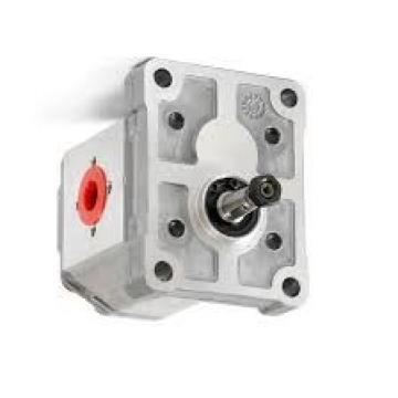 POMPA IDRAULICA snby - 2.5/0.5 bassa pressione piccola pompa lubrificante snby-Multi-Plate.