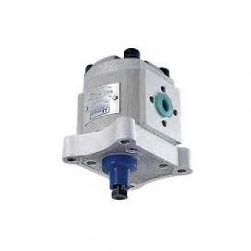 Servotec Pompa Idraulica Sterzo Con Olio (STEP137XSET) Mini Del Servosterzo