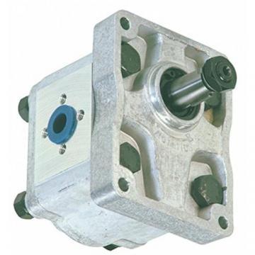 Sollevatore per gru a pompa idraulica a doppio effetto da 10 quart