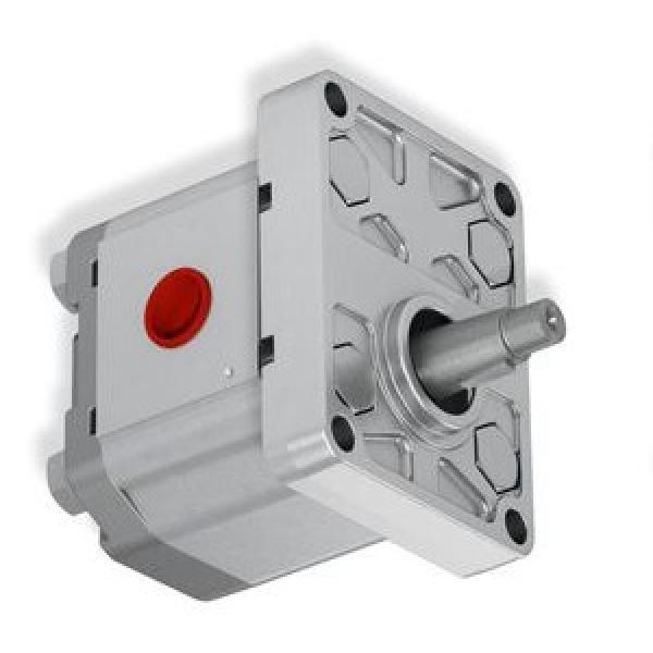 Flowfit Idraulico 415v Motore Set Pompa, 4Kw, 6cc / Rev, 9 L / Minuto ZZ000122 #1 image