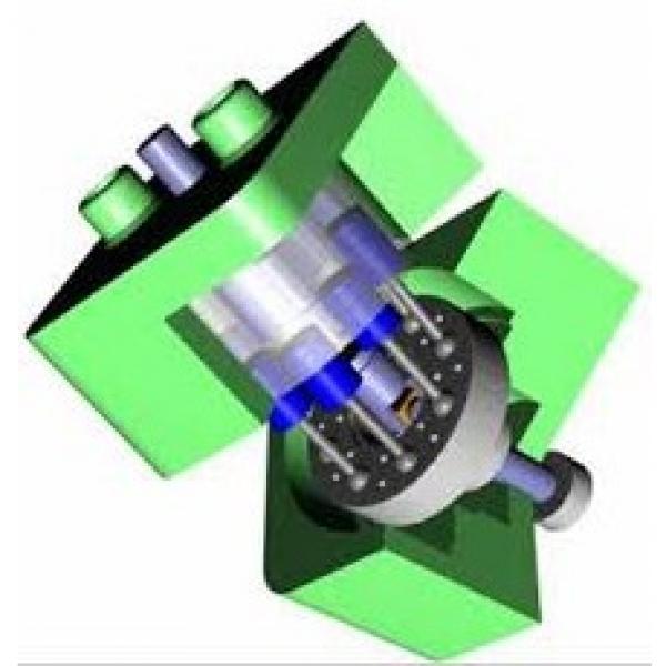 Pompa in alluminio a 4 membrane pistone semidrauliche per irrigazione 91558 #1 image