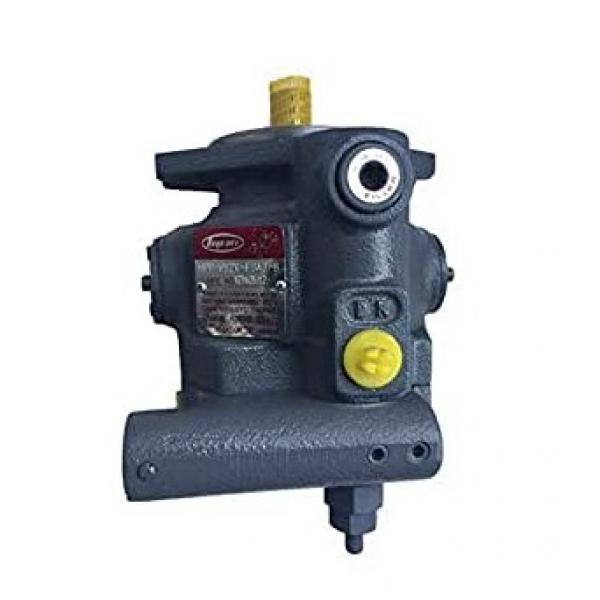 PM-019 Pompa AIRLESS a pistone con motore elettrico 2,1 l/min, 1100W, 220 bar #1 image