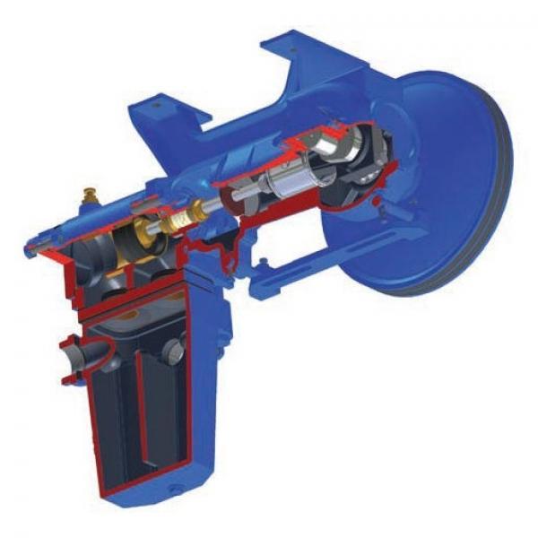 Pompa freno radiale a pollice Discacciati leva nera forata e pistone 16mm #1 image