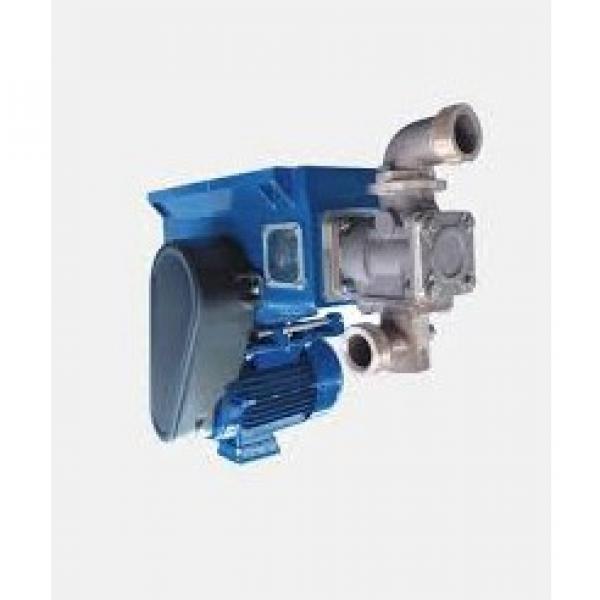 Pompa travaso A PISTONE per fusti OLIO 60LT/MIN 208 CASTROL - PER OLIO E GASOLIO #2 image