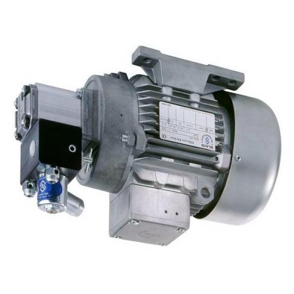 Genuine Parker/JCB 3CX Twin hydraulic pump 333/G5390 36 + 29cc/rev. Made in EU #1 image
