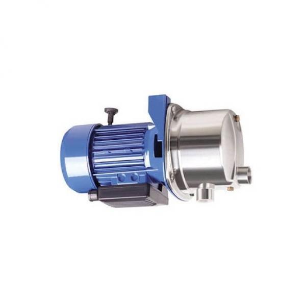 Nuova inserzioneGenuine CNH Case New Holland Massey Ferguson Fermec 1471544M91 Hydraulic Pump #1 image