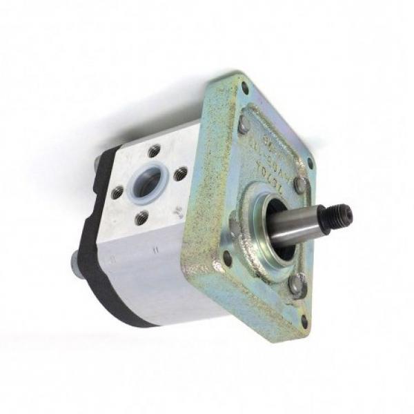 #257954A1 pompa idraulica per il caso 580SL 580SM 580SL SERIE 2 Braccio escavatore #1 image