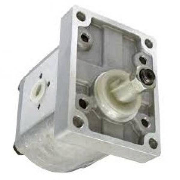 4L 12V Volt Pompa Idraulica Gruppo Oleodinamica Doppio Effetto Ascensore #1 image