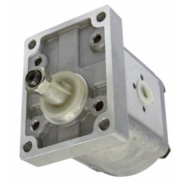 4L 12V Volt Pompa Idraulica Gruppo Oleodinamica Doppio Effetto Ascensore #3 image