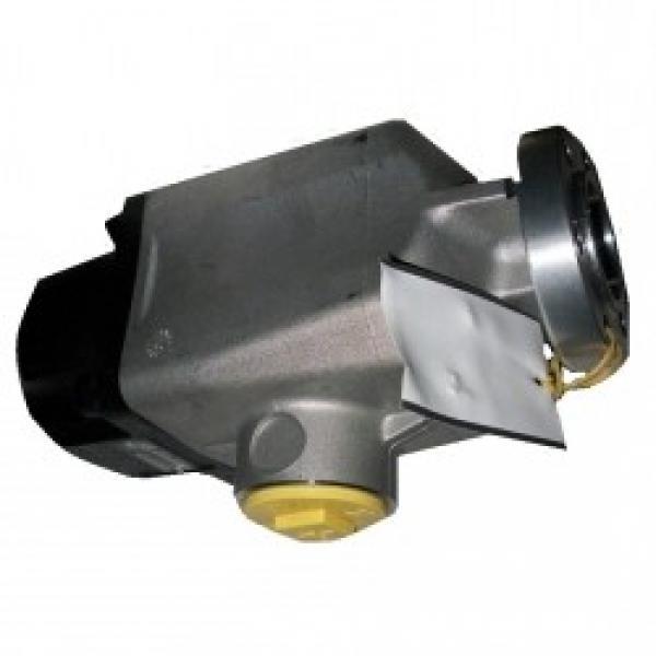 HAWE R 1,0 pompa a pistoni oleodinamica #1 image