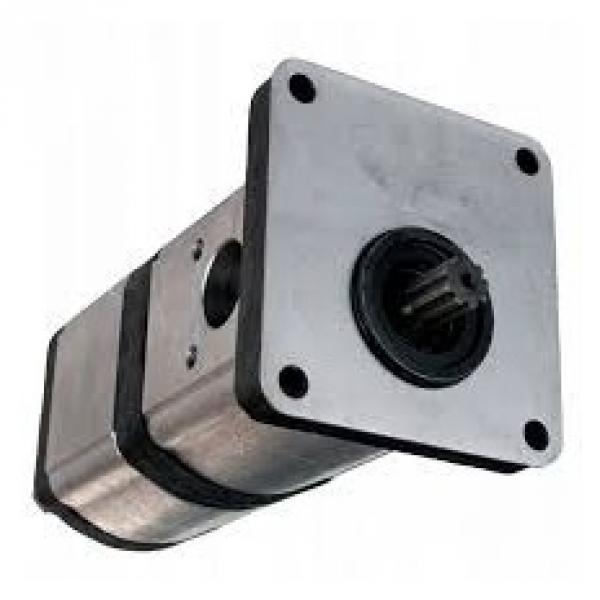 Fuji VKP061A pompa dell'olio elettrico 100W 3PH 230V 3/8B PIPE Taglia 2 Poli (11699) #1 image
