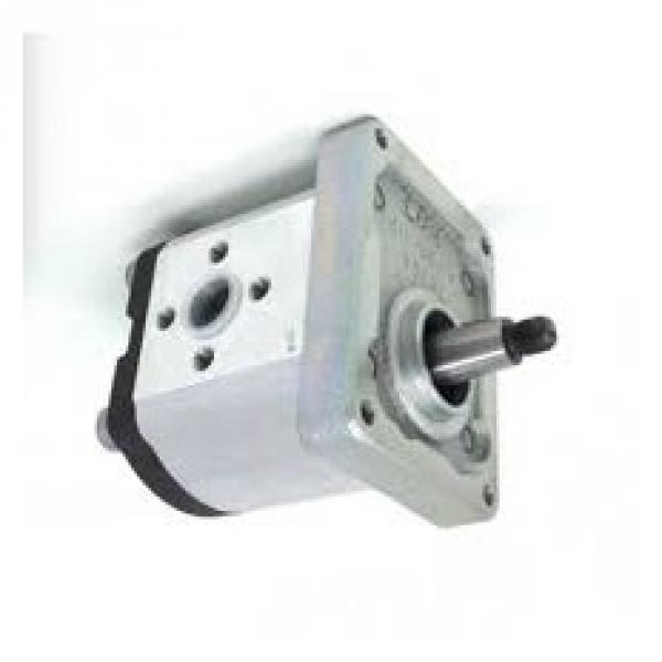 Boschetto Gru Pompa Idraulica P/N 601397 #2 image