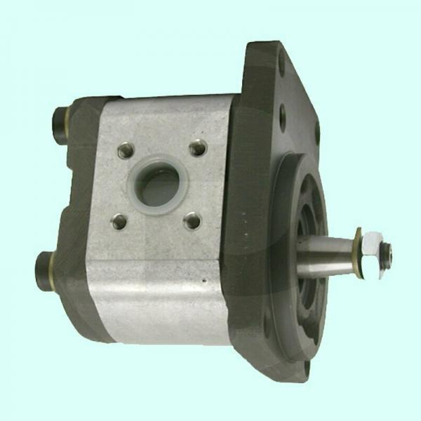 Fuji VKP061A pompa dell'olio elettrico 100W 3PH 230V 3/8B PIPE Taglia 2 Poli (11699) #2 image