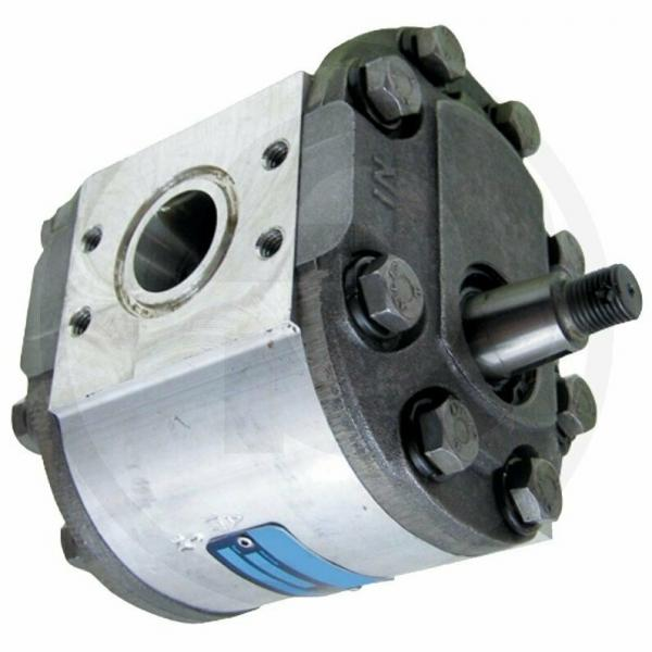 POMPA idraulica trattore HUB per Ford New Holland Industrial 702 703 713 723 #1 image