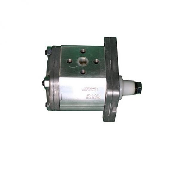183005M91 Pompa di sollevatore idraulico per trattore Massey Ferguson 35 50 65 TO35 253 #1 image