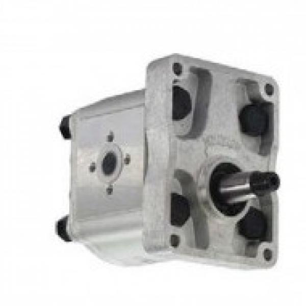 Aggregato Idraulico a Motore Con Pompa 200bar P. Es. Per Spaccalegna Parte Nuova #2 image