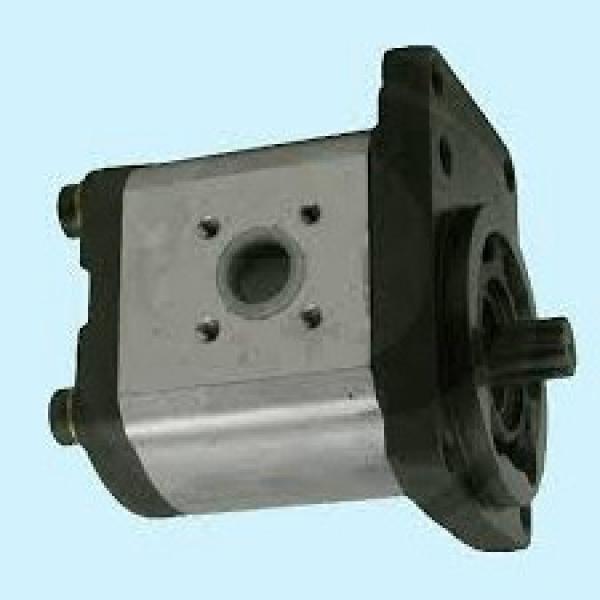 molla interna piastra-pompa sollevatore trattori ford 2000-3000  cod. c5nn-646-a #1 image