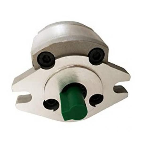 Rainhart 415 Calcestruzzo Fascio Interruttore Idraulico Fluido Olio Mano Pompa #1 image