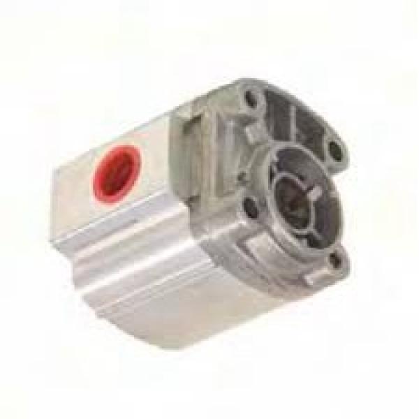 10 PC filtri di Carburante Delphi CAV 10pc Massey JCB KUBOTA CASE IH David Brown LANDINI #1 image