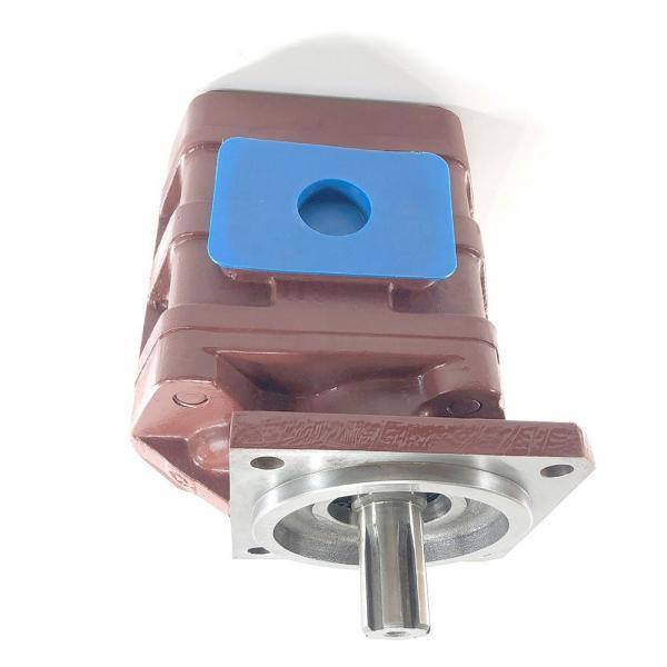 Log splitter RICAMBIO POMPA CASTING Alloggiamento Per Elettrico Idraulico (Universal) #2 image